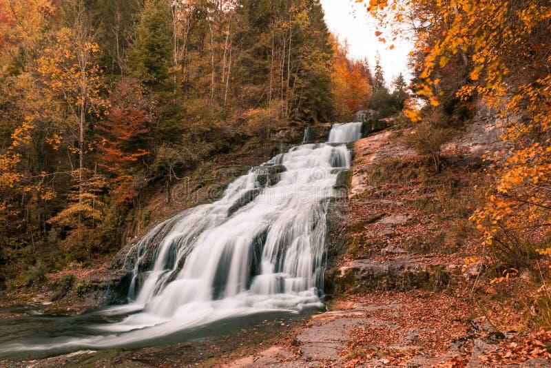 坚固性瀑布和河在有秋天叶子的森林里 免版税库存照片