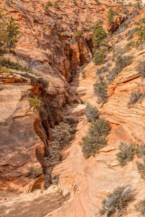 坚固性锡安国家公园风景 库存照片