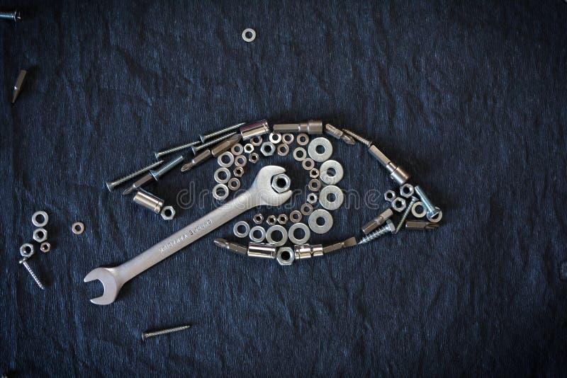 坚果和工具的肉眼 库存照片