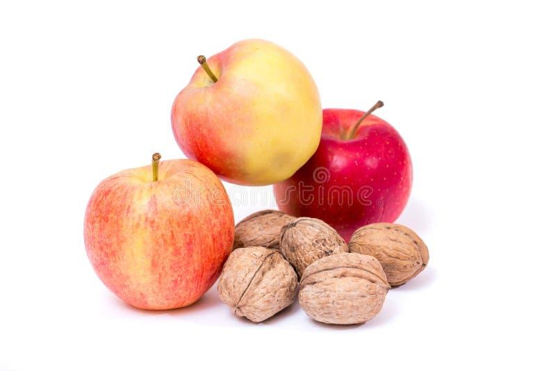 坚果和红色黄色苹果在白色背景 免版税库存照片