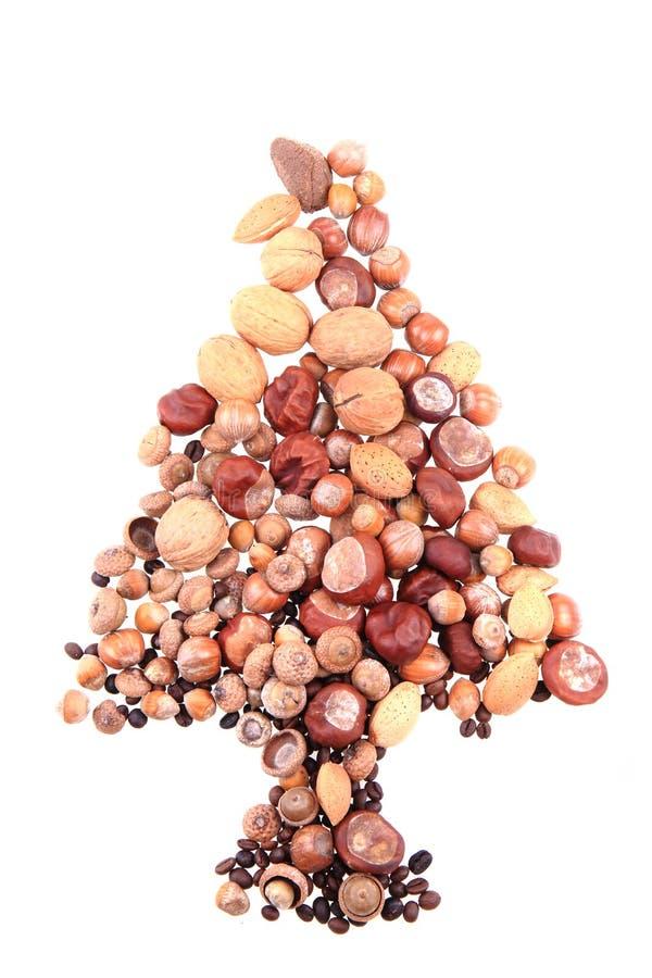 从坚果的圣诞树 免版税图库摄影