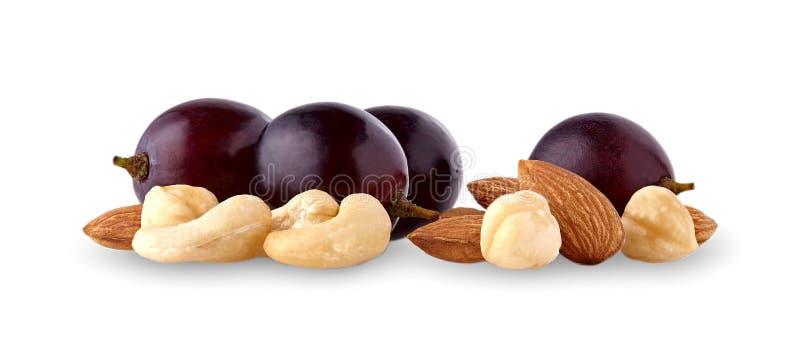 坚果的混合用在白色背景cuto隔绝的葡萄莓果 免版税库存图片