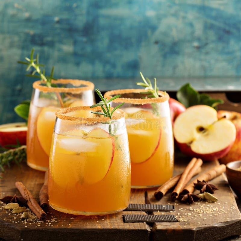 坚硬苹果汁鸡尾酒用秋天香料 免版税库存图片