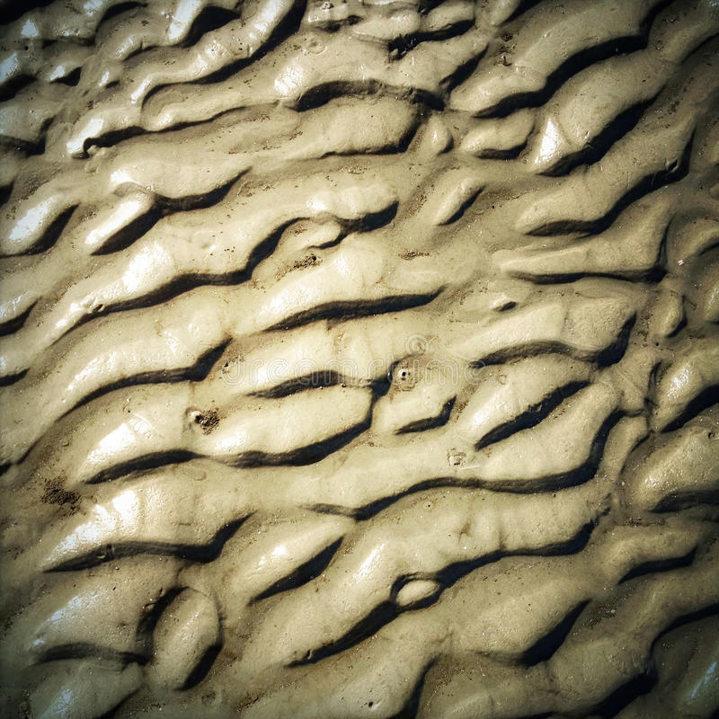 坚硬起波纹的沙子 免版税库存照片