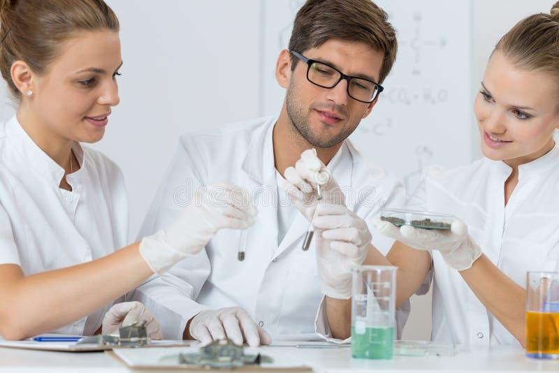 坚苦工作在化学实验室 库存照片