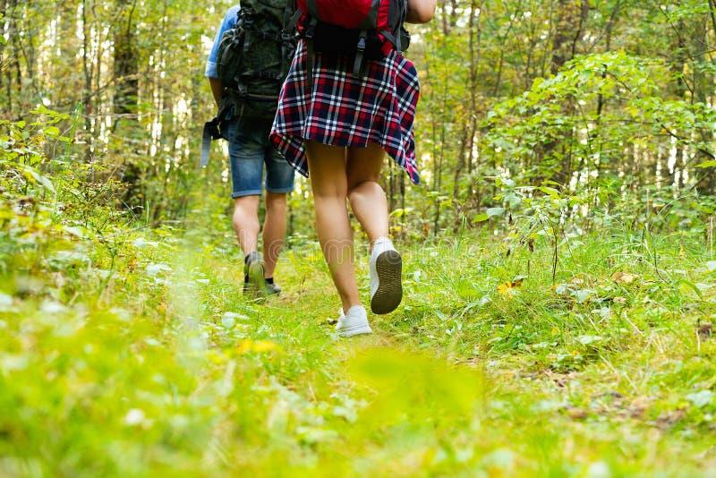 坚韧路线 一起远足在森林的美好的年轻夫妇,当享受他们的旅途时 免版税库存照片