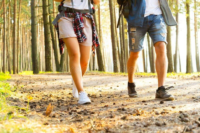 坚韧路线 一起远足在森林的美好的年轻夫妇,当享受他们的旅途时 库存图片