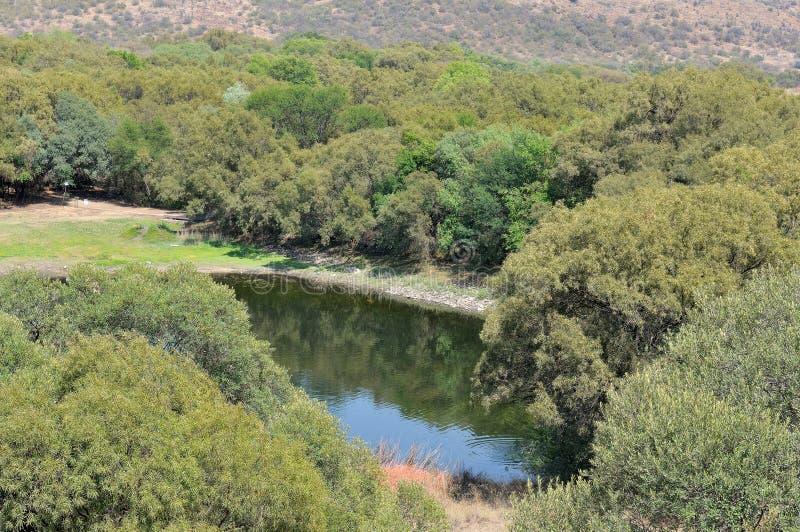水坝在自由州植物园里 免版税库存照片