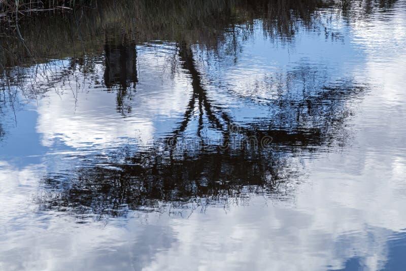水坝水的树蓝色多云天空摘要反射 免版税库存照片