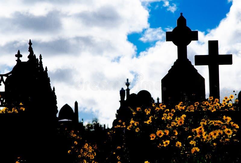 坟园剪影,图象显示许多黄色雏菊花的发怒墓碑和领域与剧烈的多云天空的 库存照片