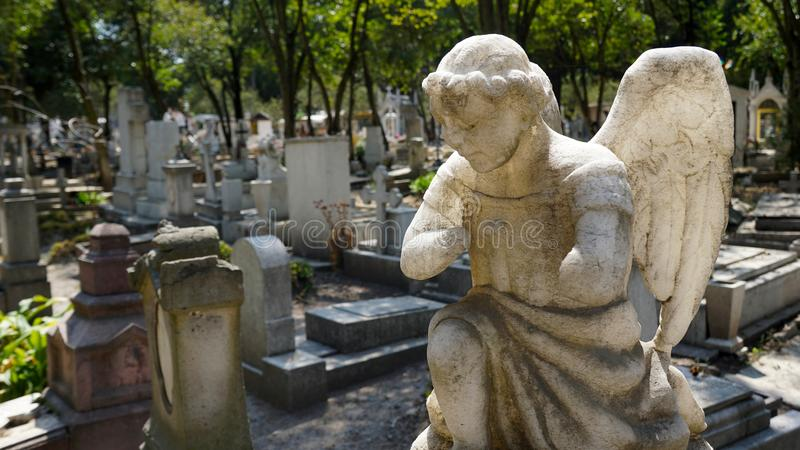 坟园天使雕塑 免版税库存照片