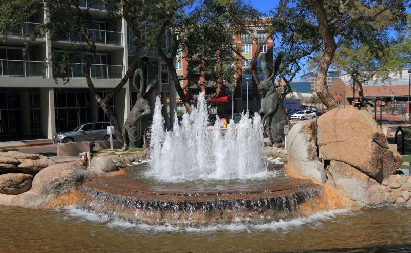 坦佩,亚利桑那:兔子喷泉在市中心 免版税库存照片