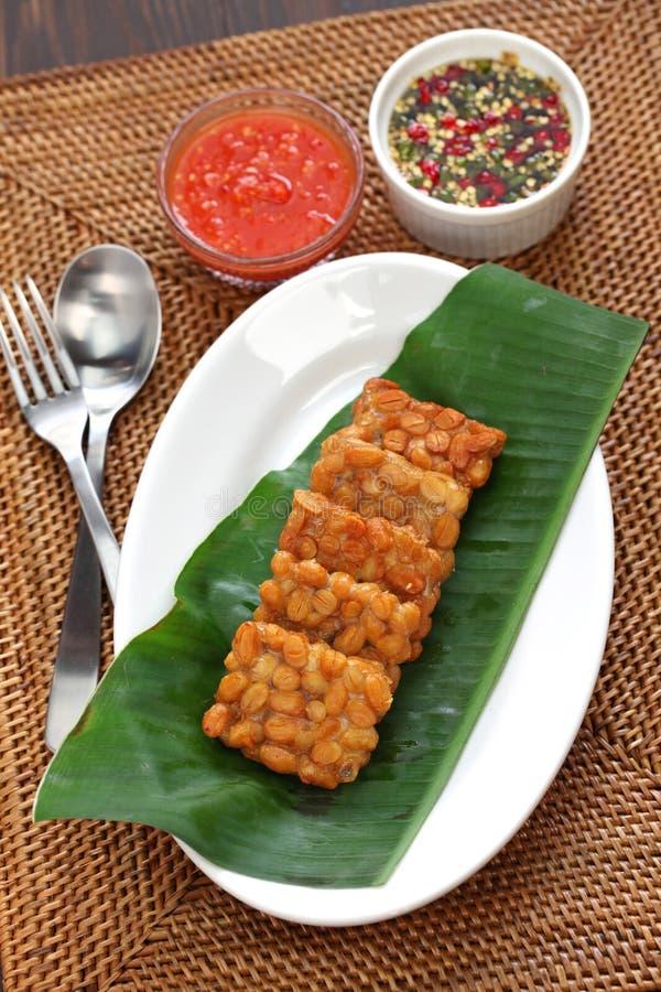 坦佩goreng,油煎的tempeh,印度尼西亚素食食物 免版税库存照片