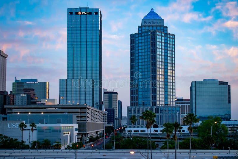 坦帕街市鸟瞰图日出背景的3 免版税库存照片