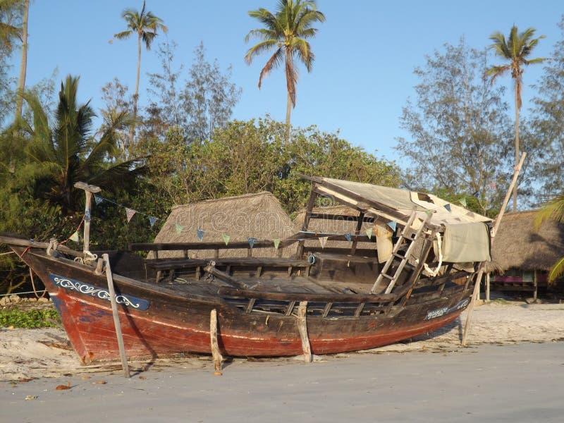 坦桑尼亚 免版税库存图片