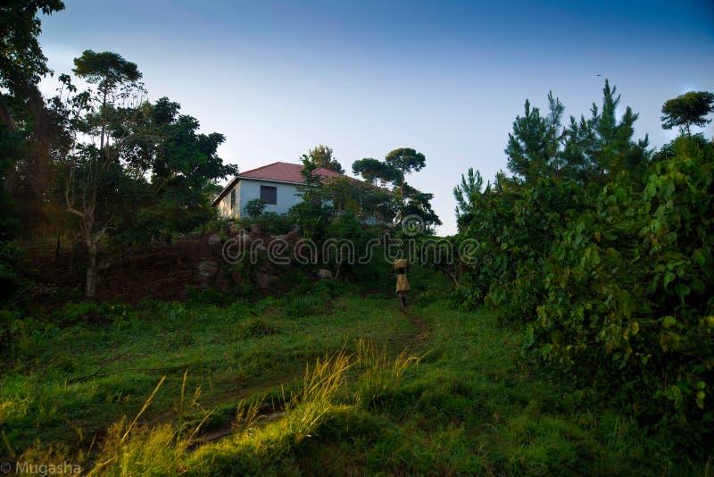 坦桑尼亚Lwiza家庭村庄 免版税库存照片