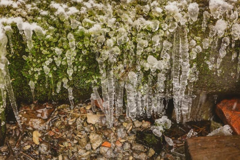 垂悬从一块岩石突出物微型洞环境、青苔和红色石头的冷淡的白色冰柱 免版税库存图片