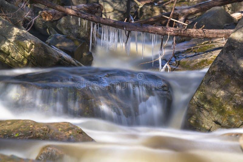 垂悬从下落的树的微小的冰柱说谎横跨流动的水 免版税库存照片
