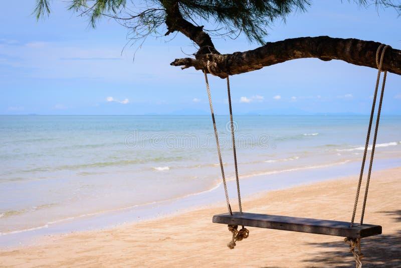 垂悬从在海滩的一棵树的木摇摆 免版税图库摄影
