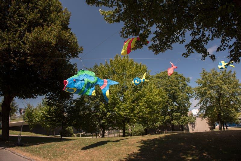 垂悬从树的大五颜六色的鱼在奥林匹亚公园在慕尼黑 免版税库存图片