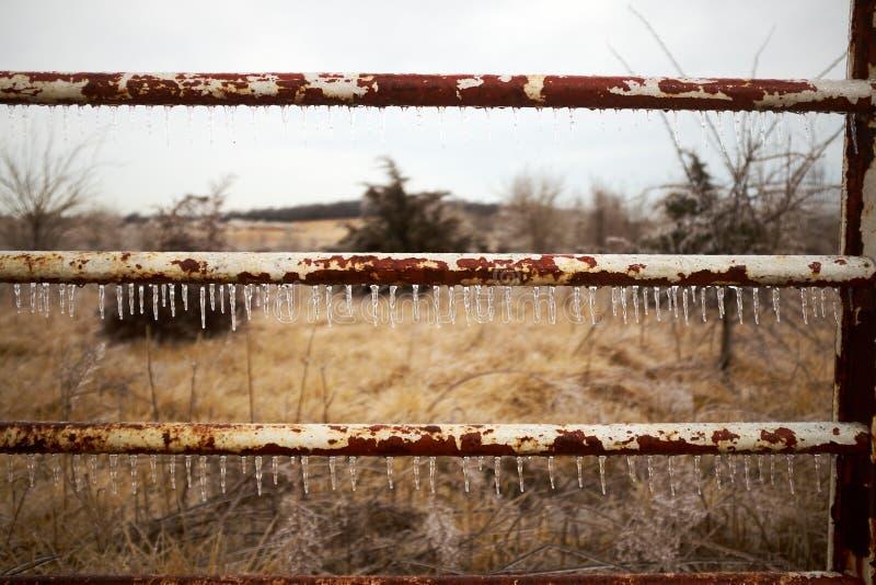 垂悬从生锈的金属杆篱芭的冰柱 免版税库存图片
