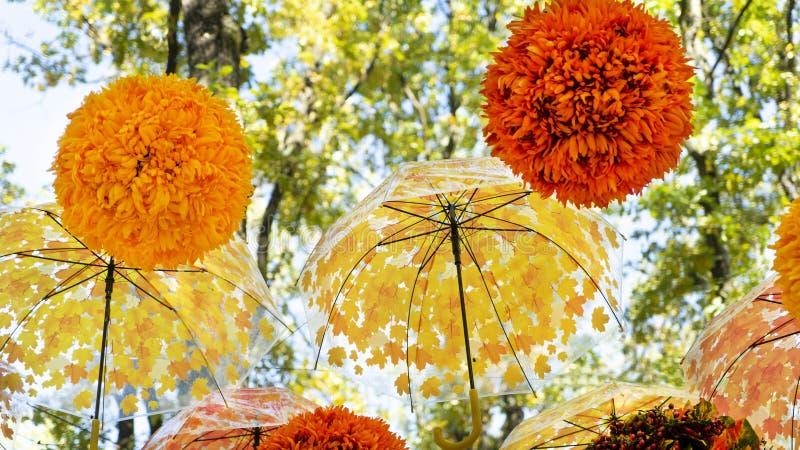垂悬和移动风的全部明亮地橙色和黄色伞和球在秋天公园 免版税库存照片