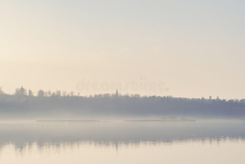 垂悬在一个安静的湖的薄雾在清早 免版税库存图片