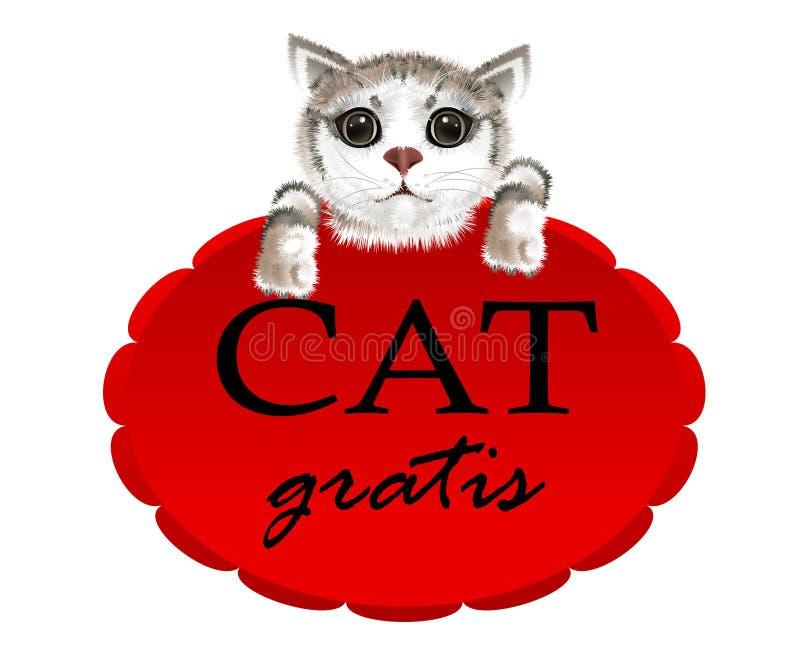 垂悬在与口号猫的一副红色横幅的小猫免费 库存例证
