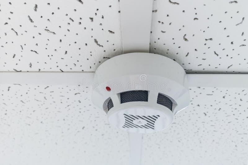 垂悬在天花板的现代烟传感器 温度测量仪通报墙壁 烟传感器的墙壁在通报的天花板的 库存照片