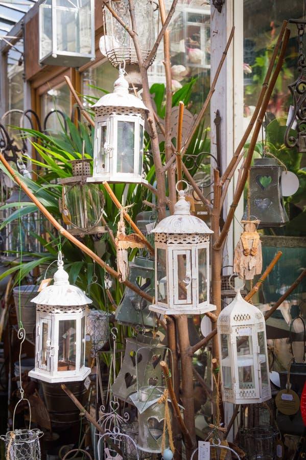 垂悬在山楂树分支的白色铁灯笼 库存照片