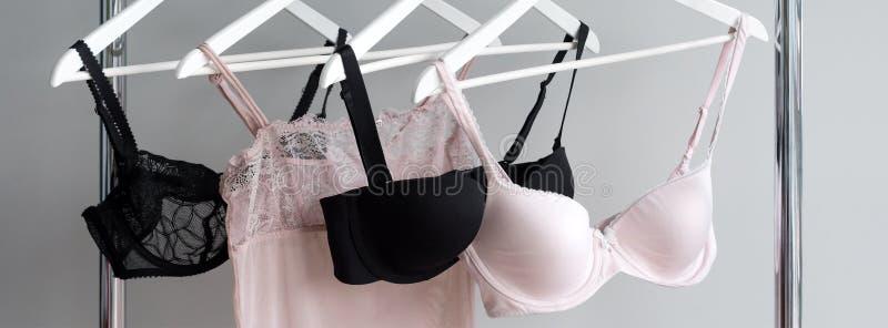 垂悬在挂衣架的胸罩Vareity 纺织品,内衣 女性胸罩在女用贴身内衣裤内衣商店 做广告,销售,时尚 库存图片