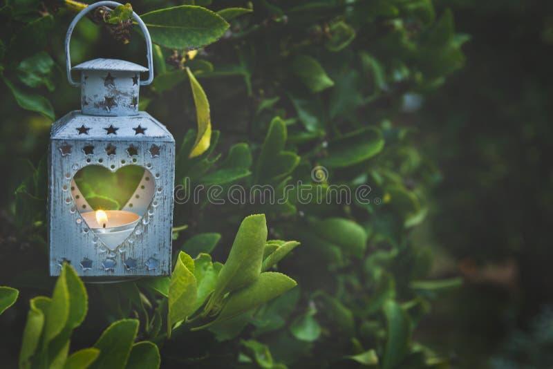 垂悬在树枝的葡萄酒金属心脏形状蜡烛台升灼烧的火焰在庭院里 华伦泰母亲` s天 库存图片