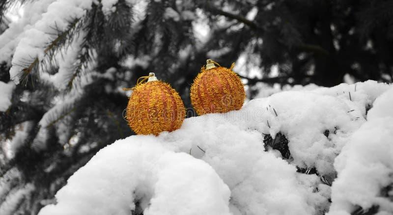 垂悬在树的金黄圣诞节中看不中用的物品 库存照片