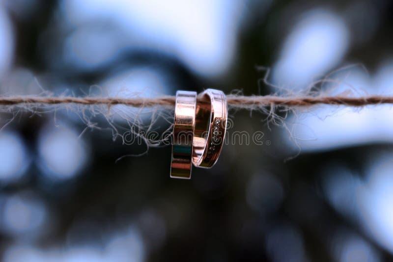 垂悬在棕榈树背景的一条绳索的两个金子婚戒  特写镜头,婚礼,婚姻债券  免版税库存图片
