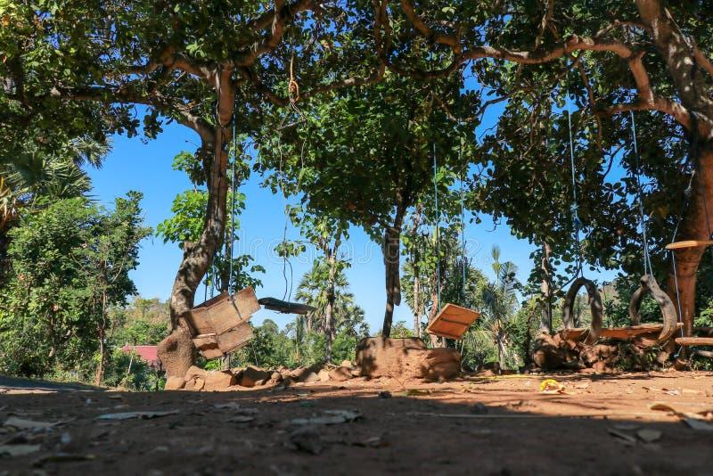 垂悬在热带树的孩子的摇摆 巴厘语孩子的低廉乐趣 摇摆由绳索,老轮胎,分支,棍子做成 免版税库存图片