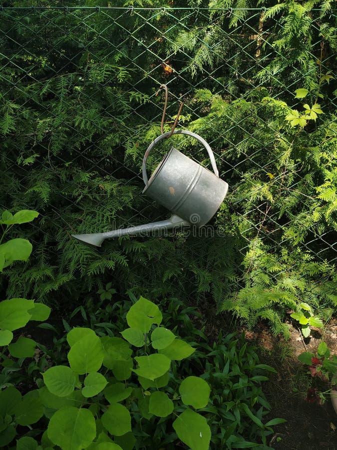 垂悬在篱芭的金属储水箱在庭院里 库存照片