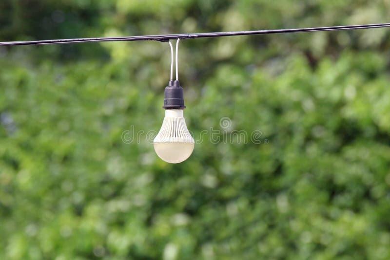 垂悬在绳子电导线线缆绳的电灯泡有绿色自然树bokeh照明设备背景 库存照片