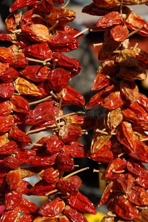 垂悬外部的各式各样的红辣椒 免版税库存图片