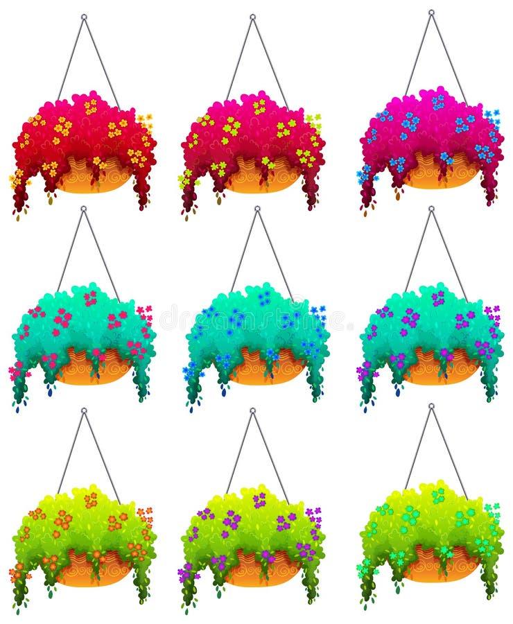 垂悬的室内植物 向量例证