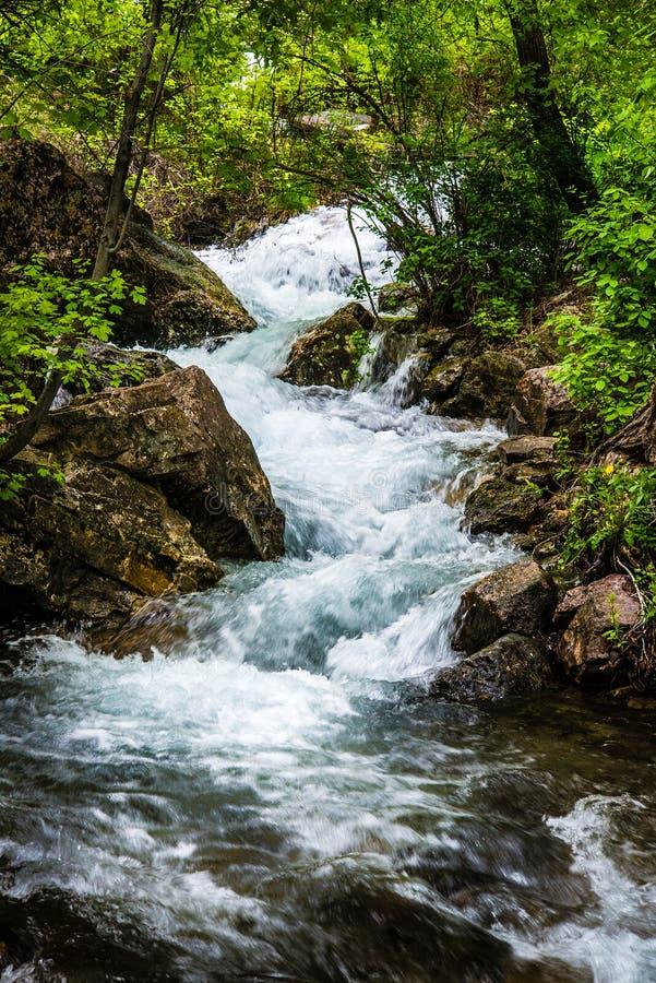 垂悬的湖小河在科罗拉多 免版税库存照片