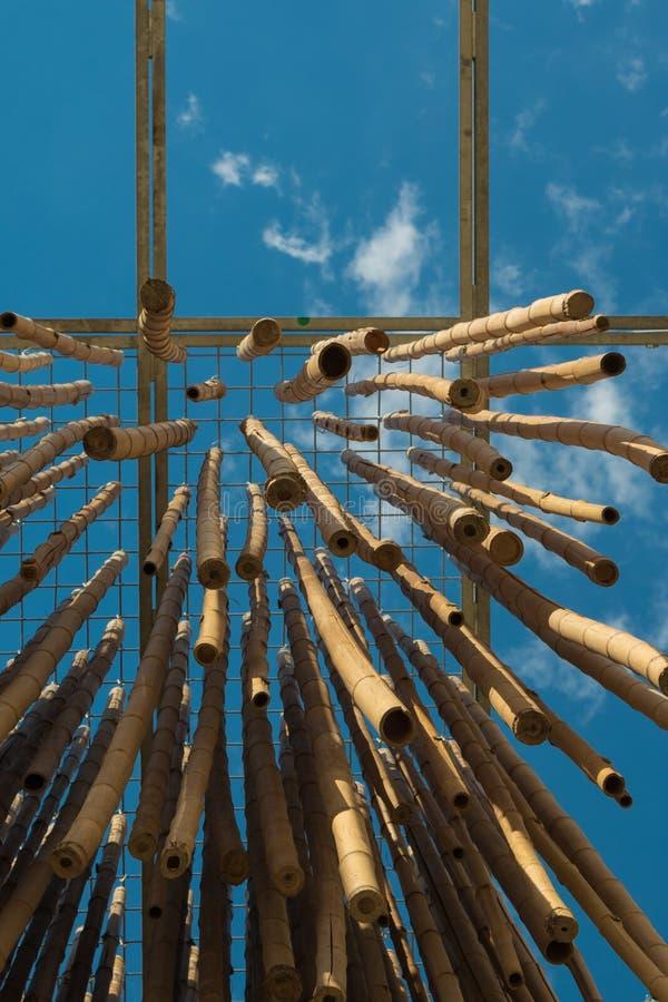 垂悬的竹藤茎,蓝天在背景中 免版税库存照片