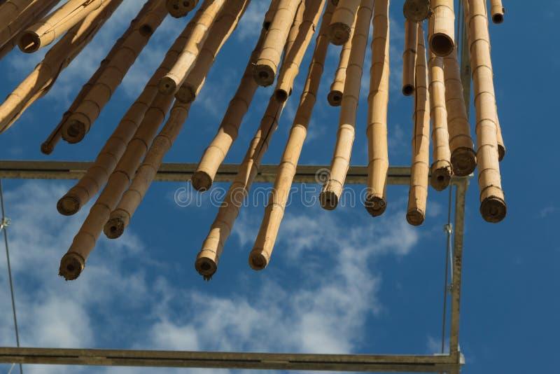垂悬的竹藤茎,蓝天在背景中 免版税库存图片