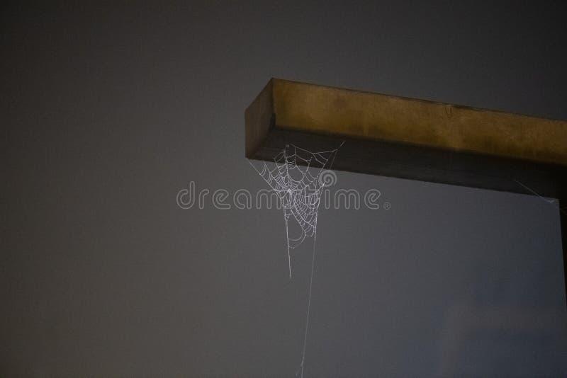 垂悬金属棒的蜘蛛网 免版税库存图片