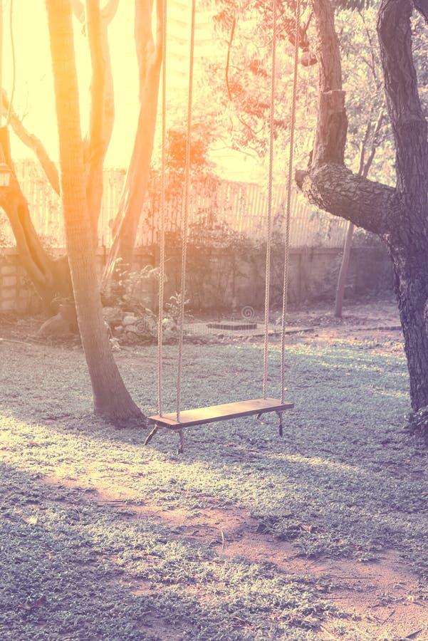 垂悬从与阳光的一棵大树-葡萄酒滤色器的空的木摇摆 免版税库存图片