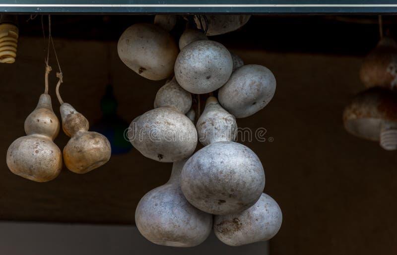垂悬从在一小希腊taverna的天花板的干南瓜 corfu希腊 免版税库存图片