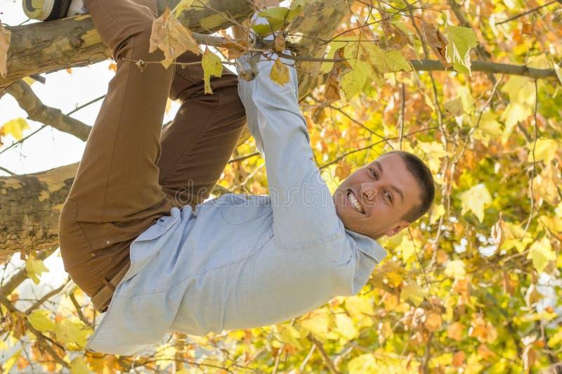 垂悬从树的微笑的英俊的人 免版税库存图片