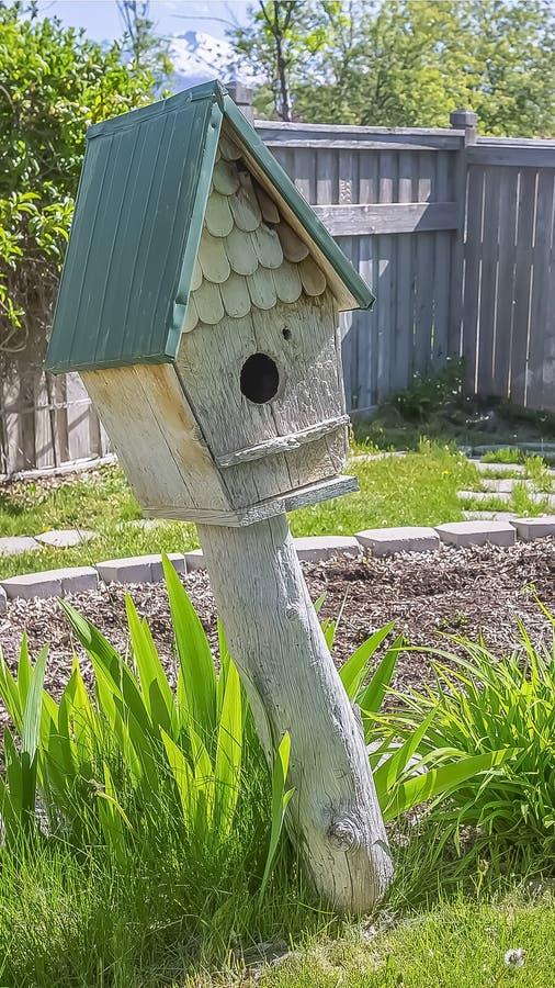 垂直的木鸟舍和充满活力的绿色植物家的晴朗的庭院的 免版税库存图片