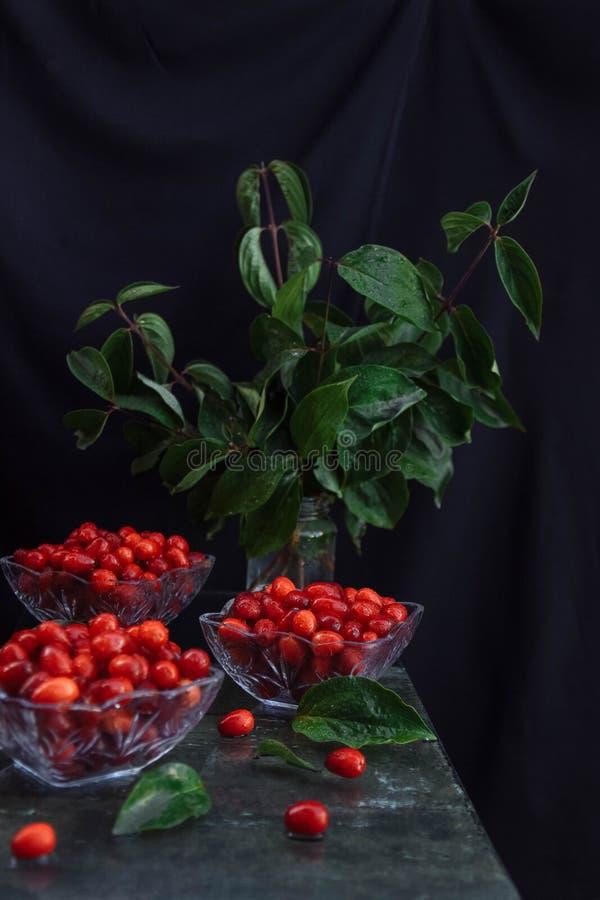 垂直的静物画用野生莓果 免版税库存照片