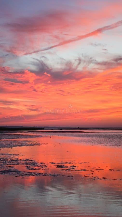 垂直的日落岩石港口鳕鱼角新英格兰 免版税库存照片