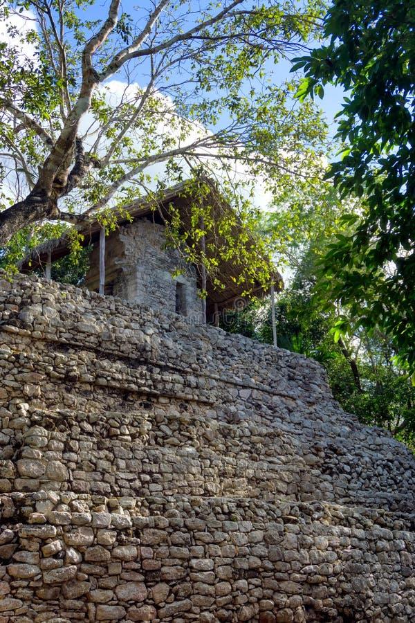 绘画垂直视图的寺庙 库存图片
